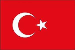 Türk dili tərcümə xidməti